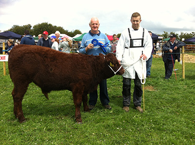 Athlone Show '15 2nd winner male calf Tullamaine Pimpant with Andrew & Joseph Byrne
