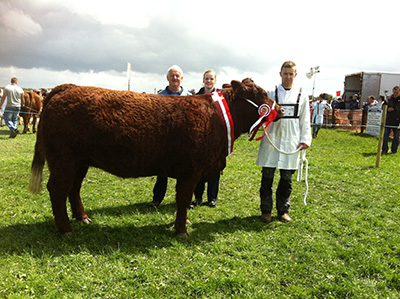 Athlone show '15 Champion Hantise (FR '13) owner Andrew Bryne with Joseph and Linda Byrne.
