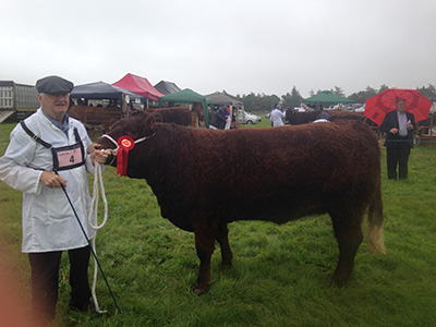 Ossory Show, Reserve Champion, Beguine owner Andrew Byrne
