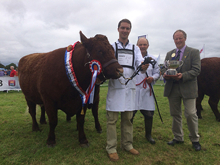 Tullamore Show 2016 Champion Clew Bay Kate owner Declan Bell with judge Rob Livesley UK