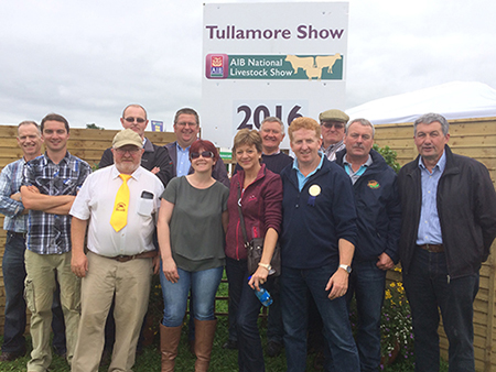 Tullamore Show 2016 Exhibitors and Helpers.