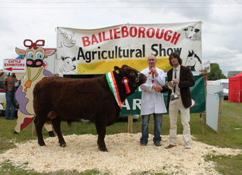 Bailieboro Agri Show 2011 Overall Saler Champion